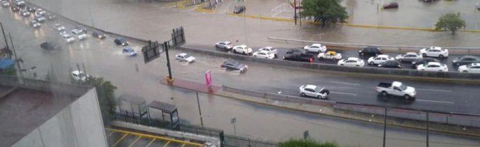 Lluvia causa inundaciones y caída de árboles en Monterrey