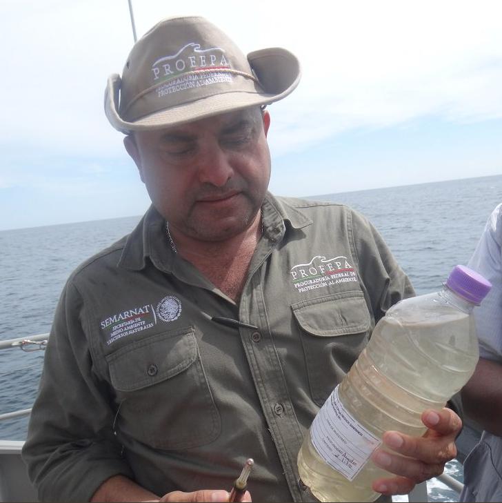 profepa mortandad tortugas golfinas chiapas marina