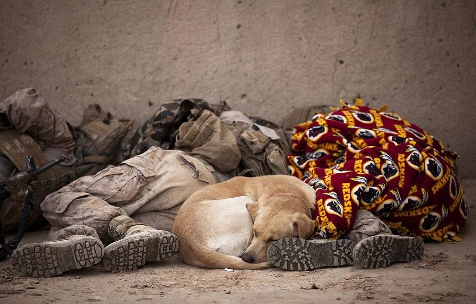 imagen-ilustrativa-soldados-durmiendo-tecnicas-para-dormir-profundamente-mejor-bien