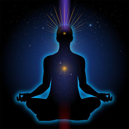 ¿Qué es el exposoma humano?, el aura viviente individual