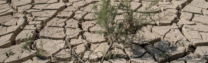 ONU advierte 12 años para evitar desastre ambiental