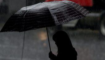 Lluvias en la CDMX dejan anegaciones y árboles caídos; autoridades atienden emergencia