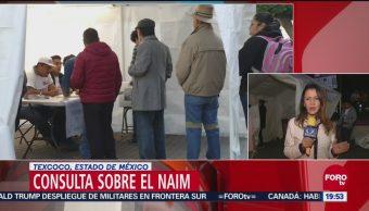 Más Mil Personas Votan Texcoco Edomex Consulta