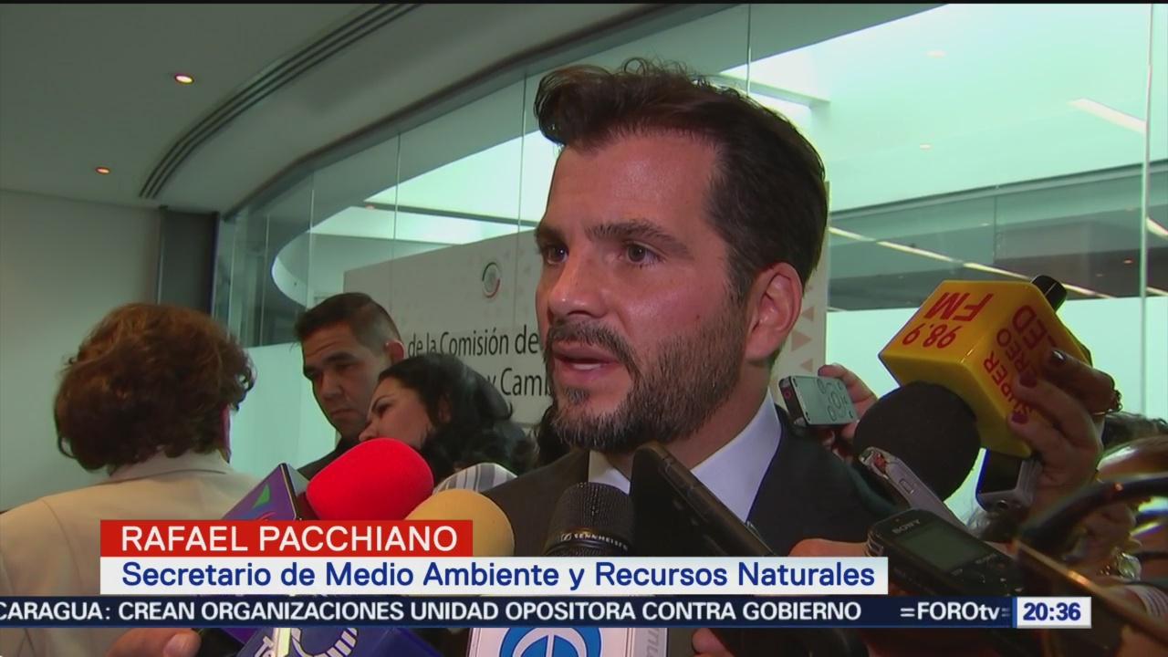 Pacchiano Defiende Viabilidad Impacto Ambiental NAIM
