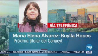 Solicitud al Conacyt es para hacer mejor planeación: Álvarez-Buylla