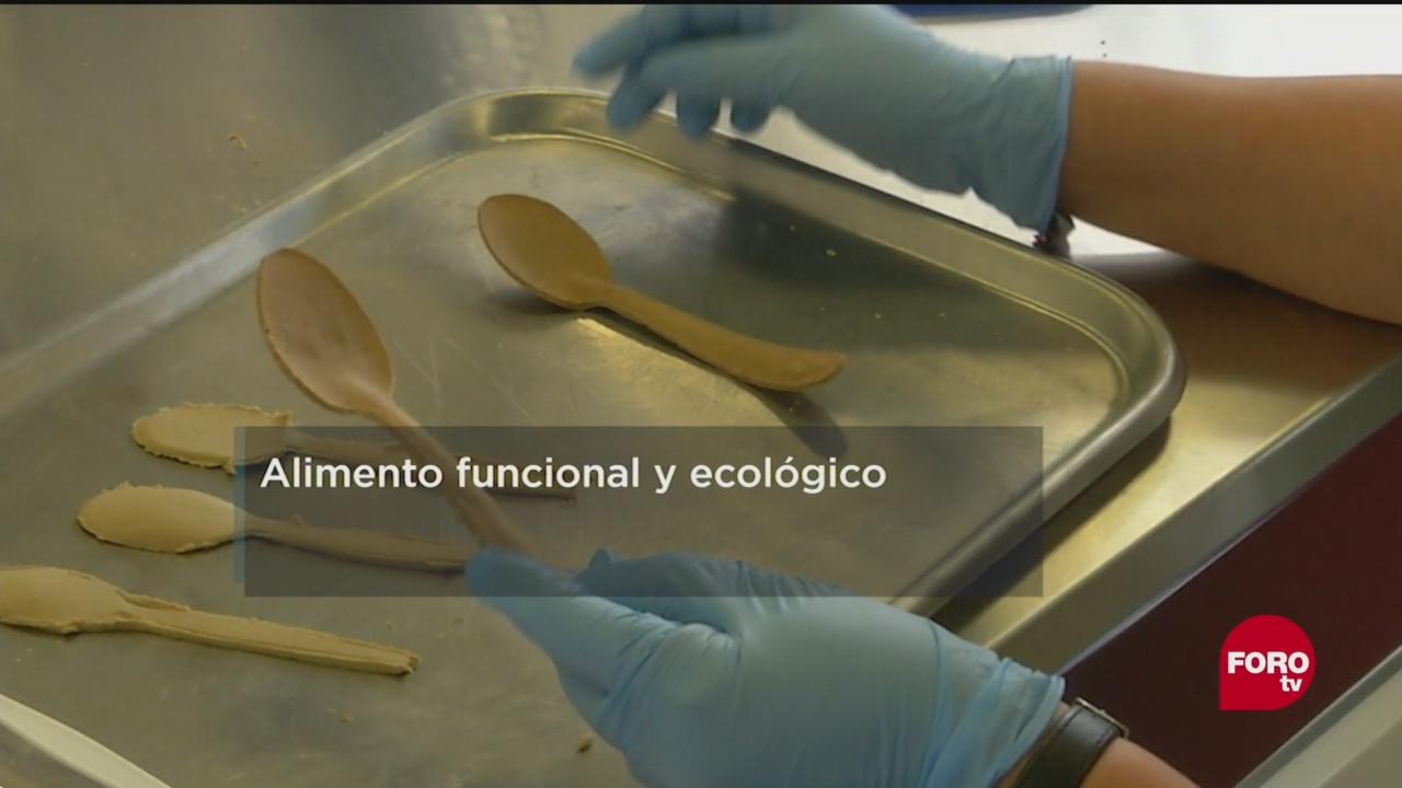 Desarrollan Ipn Cubiertos Desechables Biodegradables Investigadores Del Instituto Politécnico Nacional Salvado De Arroz