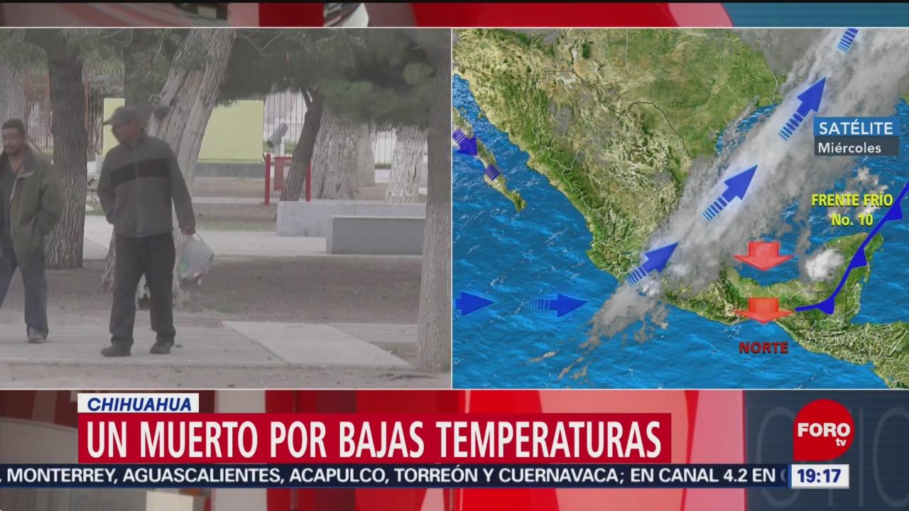 En Chihuahua Muerto Por Bajas Temperaturas