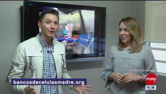 Ayudan las células madre a los niños con autismo