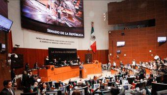 Senado pide al CJF revisar el caso Maité López