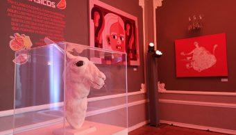 Nuevo Museo del Meme solo en CDMX
