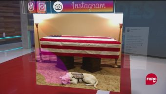 Imagen del día en Instagram