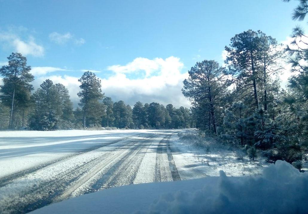 Cierran carretera en Chihuahua tras intensa nevada.