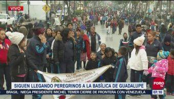 Continúa la llegada de peregrinos a la Basílica de Guadalupe