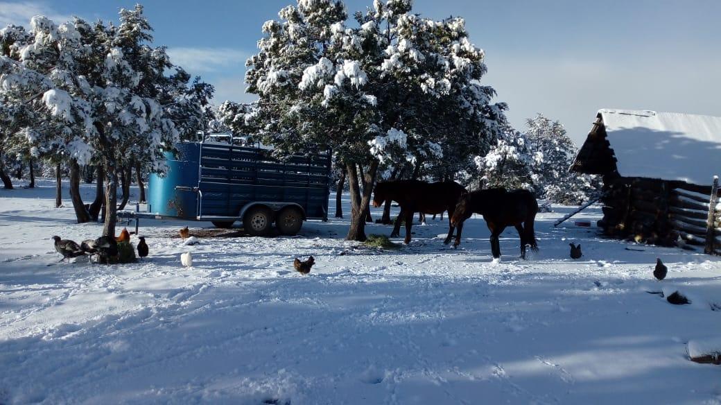 Se aproxima frente frío 21 al país