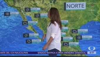 Pronostican ambiente gélido y lluvias en la mayor parte de México