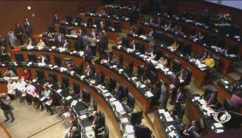 Senado Aprueba Ley Taibo Senadores FCE