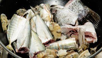 Niño-Pescado-Alergia-Alimentaria-Abuela-Alergias-alimentos-Pescados-Intoxicacion-alimentaria
