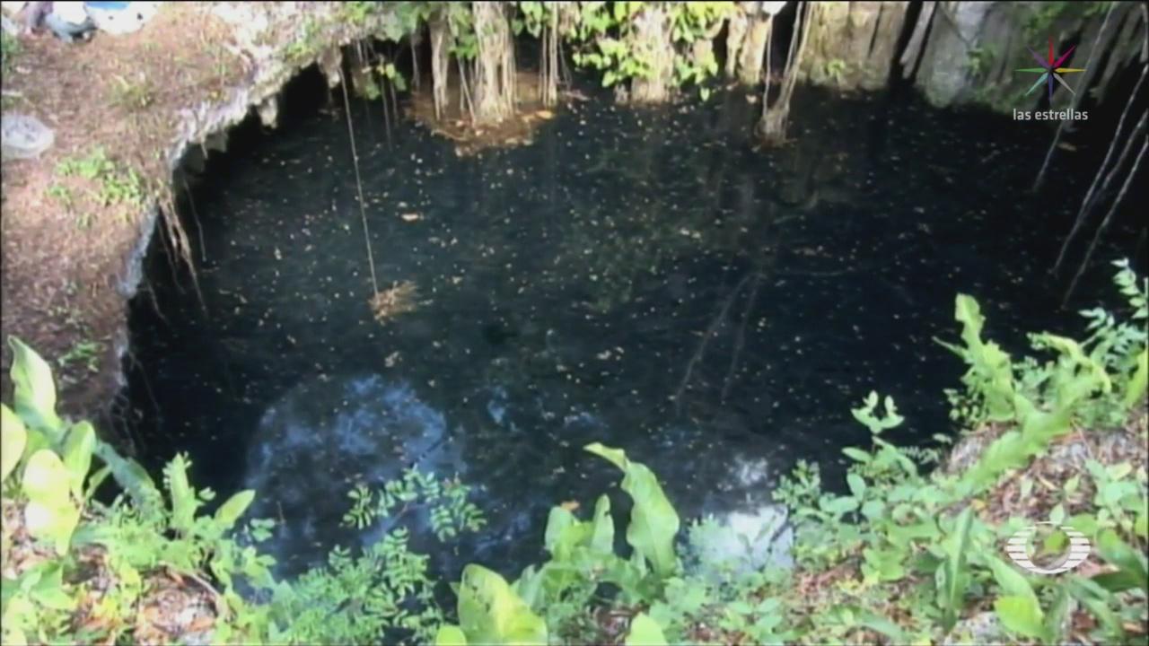 Censan Cenotes De Yucatán Medio Ambiente