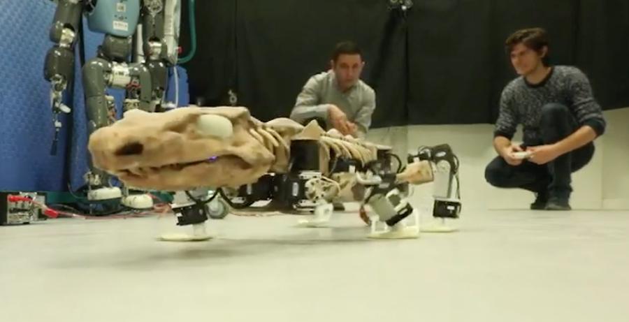 Video: Construyen robot con huesos de dinosaurio