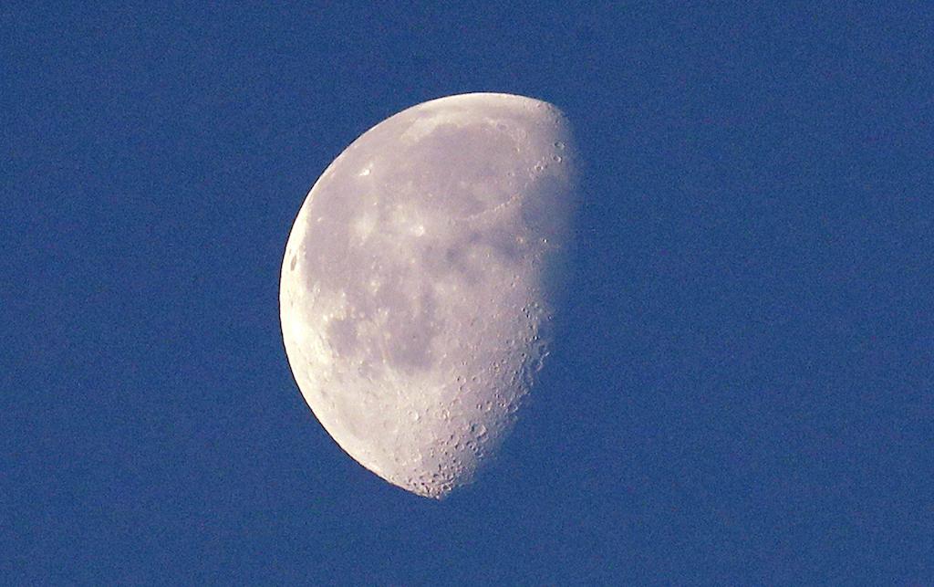 Semilla-algodon-Luna-Brota-vida-cara-oculta