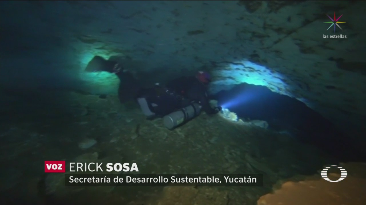 Foto: Encuentran Cueva Inundada Norte Mérida 05 de Febrero 2019