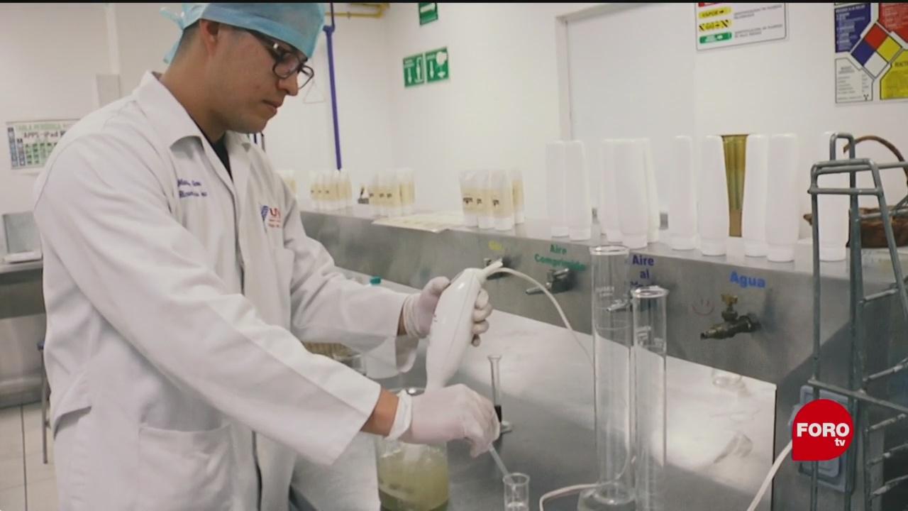 Estudiantes de la UVM desarrollan productos con plantas