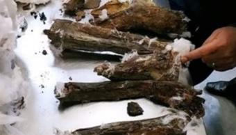 FOTO Descubren momias escondidas dentro de bocina en Egipto 24 ferbero 2019 El Cairo