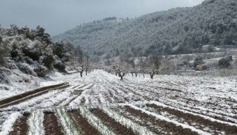 Foto: Se prevén nevadas en Sonora, 12 de enero 2019. Notimex