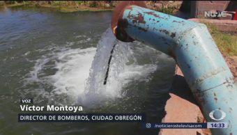 Foto: Alertan por contaminación de agua en Sonora