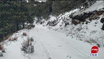 Cae nieve en el Cerro del Potosí, Nuevo León