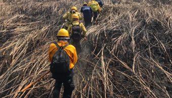Incendio consume más de mil hectáreas en reserva La Encrucijada