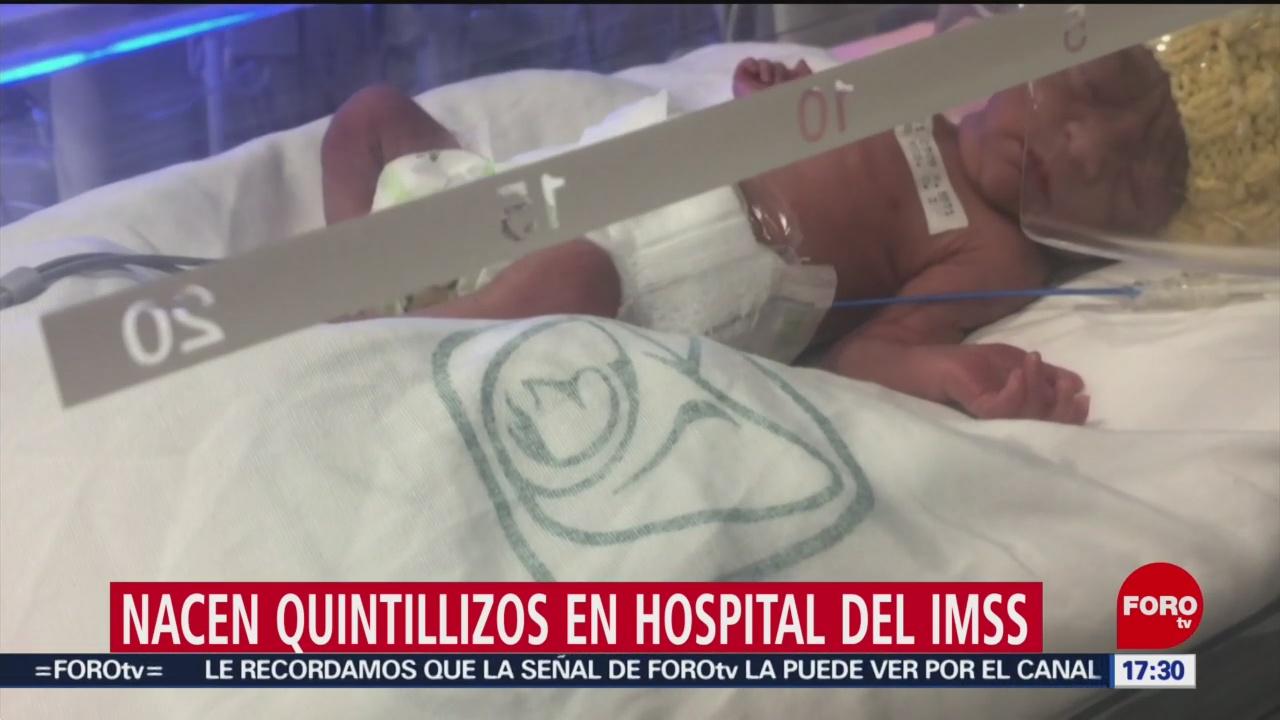 Foto: Nacen quintillizos en hospital del IMSS