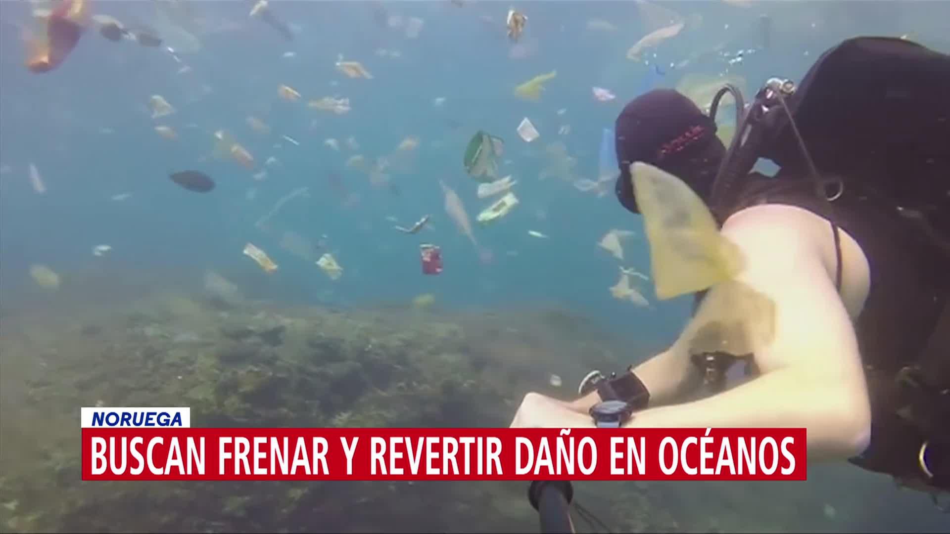 Foto: Países Revertir Daño Océanos Medio Ambiente 5 de Marzo 2019