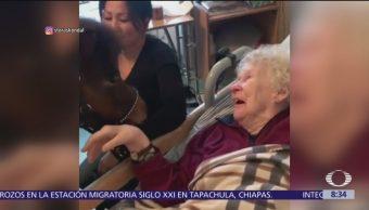 Caballo sorprende a ancianita en un asilo