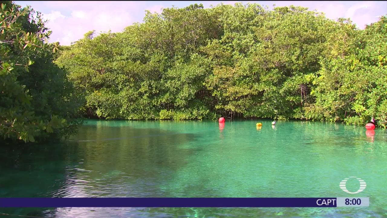 Cenote 'El manatí', conectado con el mar de la Península de Yucatán