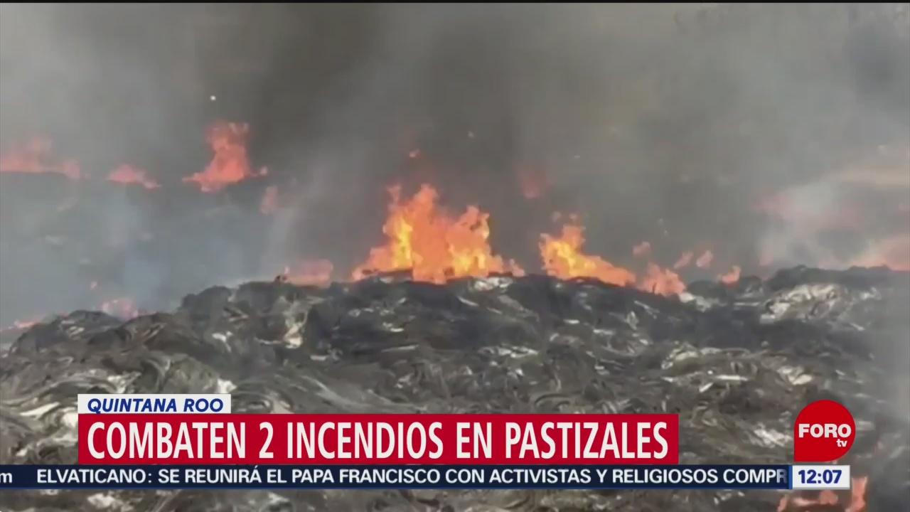 Combaten incendios forestales activos en dos municipios de Quintana Roo