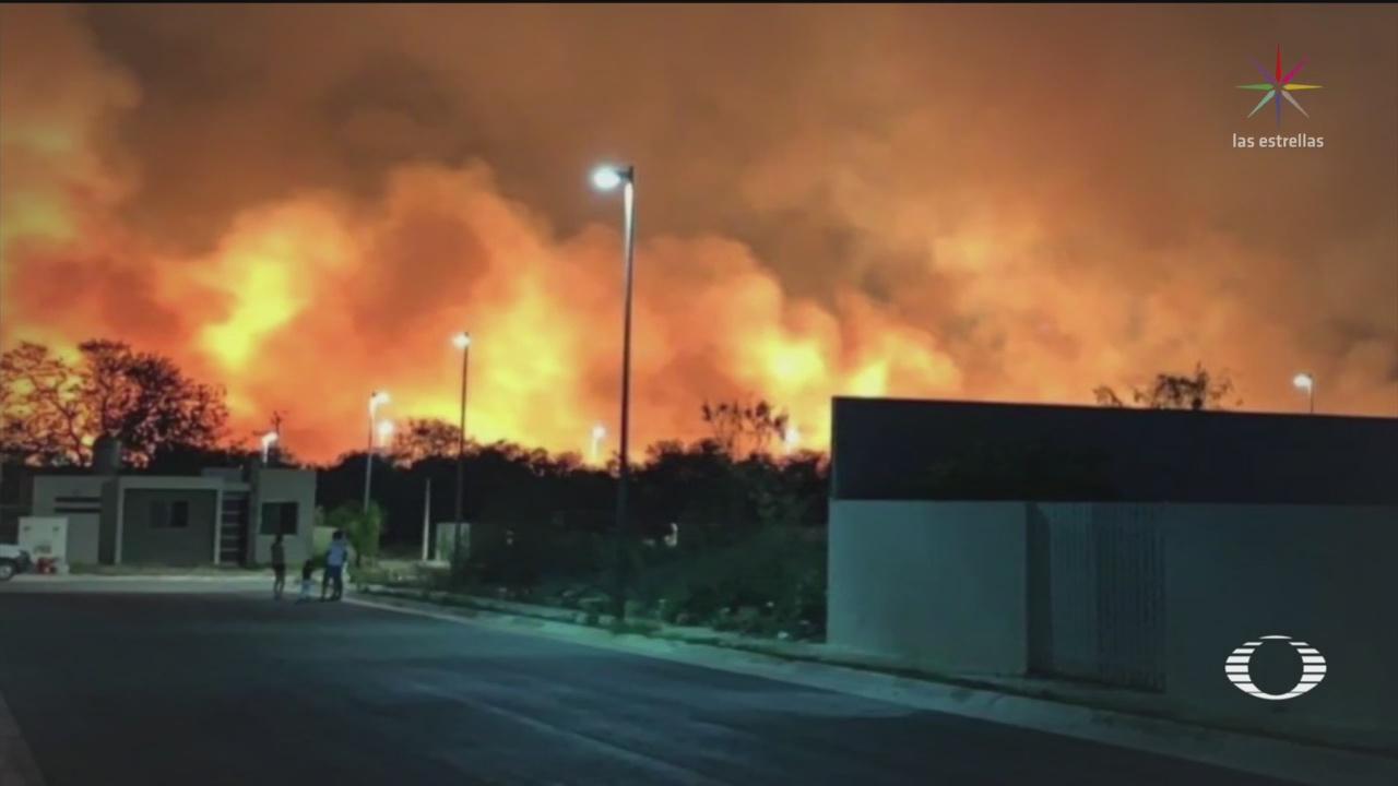 Foto: Conafor Reporta Incendios Forestales México 16 de Abril 2019