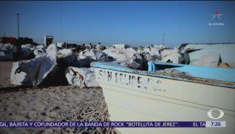 Disturbios en San Felipe, aprovechados para saquear instalaciones de Profepa