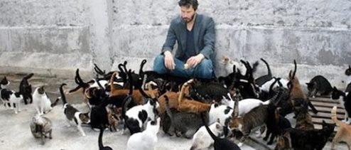 Foto: Imagen falsa del actor Keanu Reeves rodeado por gatos