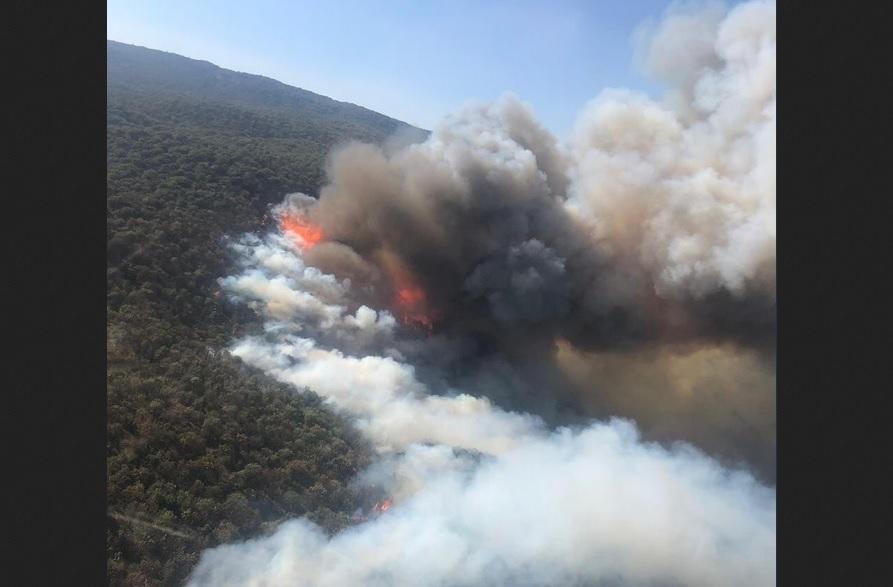 Foto: Incendio en el bosque de La Primavera, 12 de abril 2019. Twitter @PCJalisco