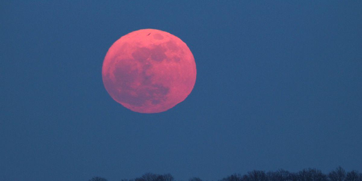 ¿Qué es la luna rosa? El fenomeno que ocurrirá el 19 de abril (GettyImages)