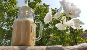 Profeco-bebidas-vegetales-proteinas-leche