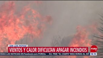 FOTO: Altas temperaturas dificultan extinguir incendios forestales en SLP, 12 MAYO 2019