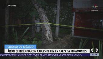 Árbol se incendia en calzada Miramontes, CDMX