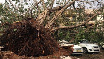 La furia de Fani deja 17 muertos y destrucción en India y Bangladesh