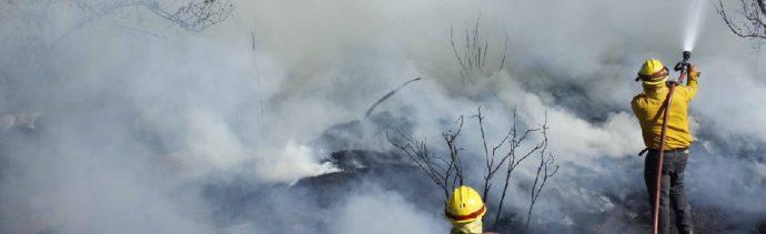 Más de 2,400 brigadistas combaten incendios forestales en México