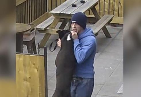 Foto: La Policía de Dorset, Inglaterra, busca a este sujeto por golpear a un perro. El 22 de mayo de 2019