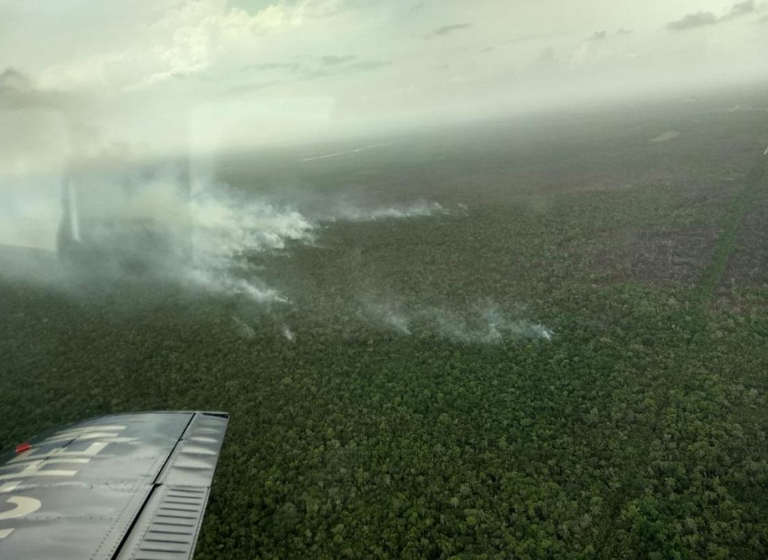 Foto: En el incidente forestal Tzalam (autopista Cancún - Mérida Km 259+500) en el municipio de Benito Juárez, mayo 18 de 2019 (Twitter: @semaqroo)