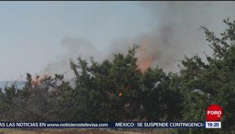 FOTO: Incendio en Sierra de la Catana en Coahuila, 19 MAYO 2019