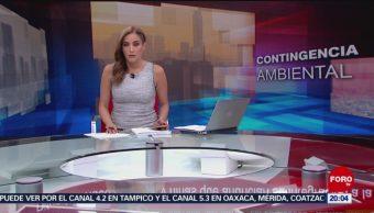 Foto: Las Noticias Danielle Dithurbide Forotv 14 de Mayo 2019